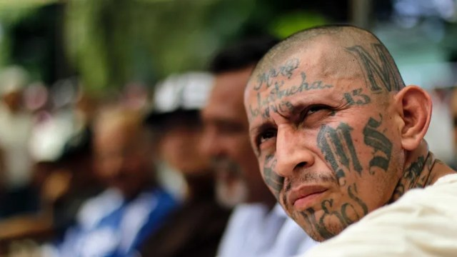 MS-13 becomes Trump's public enemy No. 1