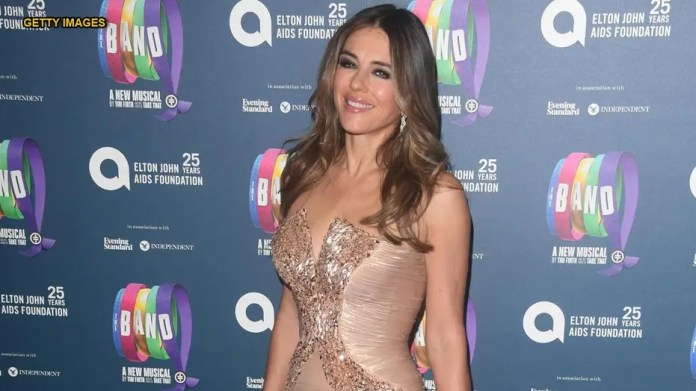 Actress Elizabeth Hurley 'pines to fall in love with someone'