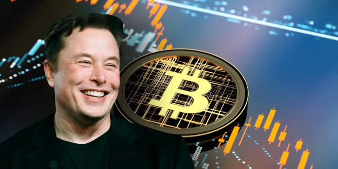 Elon Musk owns these 3 cryptocurrencies | Fox Business