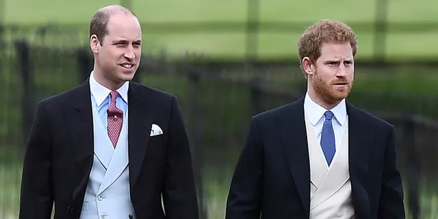 Prince William and Prince Harry will reunite on July 1 to honor their mother Princess Diana.
