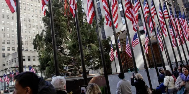 Nov. 14, 2012: File photo shows the 80th Rockefeller Center Christmas Tree being raised in New York's Rockefeller Center. The 80-foot Norway Spruce, donated by Joseph Balku, of Flanders, N.J., will be strung with 30,000 multi-colored, LEDs on 5 miles of wire, and topped with a Swarovski Crystal Star.