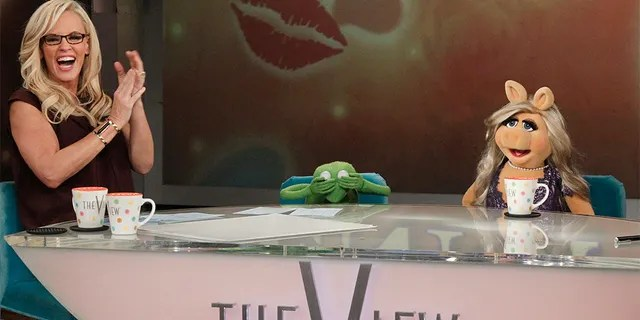 Jenny McCarthy pictured here in 2014 as a co-host on 'The View.'
