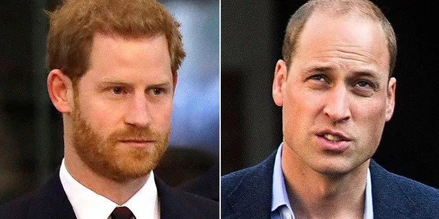 """Princes Harry (left) previously described his relationship with older brother Prince William as """"space."""""""