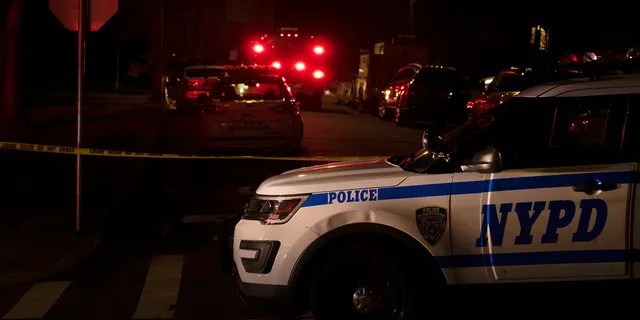 New York Police Department and New York City Fire Department units responded to a report of shots fired Wednesday in the Todt Hill section of the Staten Island borough of New York. (Joseph Ostapiuk/Staten Island Advance via AP)