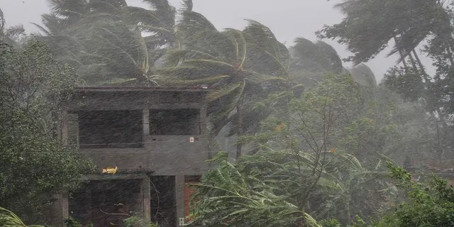 An abandoned house and trees bend with gusty winds ahead of the landfall of cyclone Fani on the outskirts of Puri, in the Indian state of Odisha. (AP Photo)