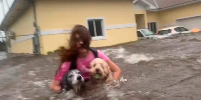 Julia Aylen wades through waist-deep water carrying her pet dogs as she is rescued from her flooded home during Hurricane Dorian in Freeport, Bahamas, Tuesday, Sept. 3, 2019.