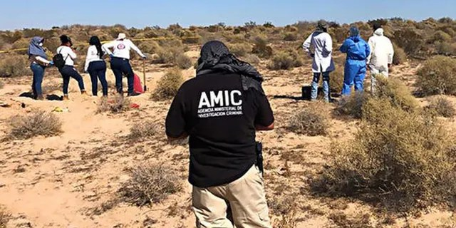 Last October, a group of mothers uncovered searching for missing loved ones discovered a mass grave in Sonora. The initially found 42 bodies, but the count continued to increase in the ensuing weeks.