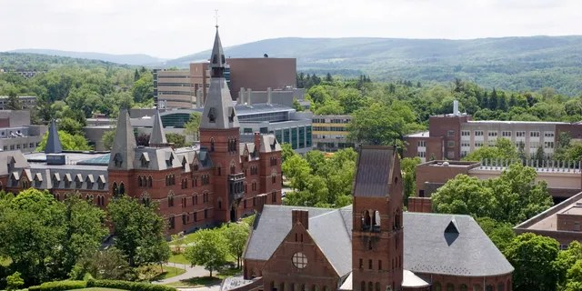Cornell University buildings from McGraw Tower.