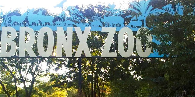 FILE - This Sept. 21, 2012, file photo shows an entrance to the Bronx Zoo in New York. A tiger at the zoo has tested positive for the new coronavirus.(AP Photo/Jim Fitzgerlad, File)