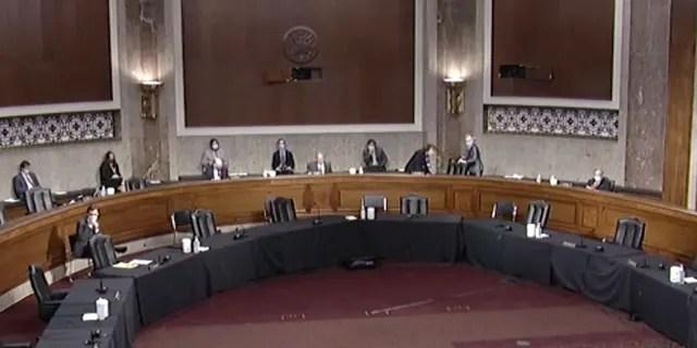A socially-distanced Senate Judiciary Committee Hearing. (Senate Judiciary Committee)