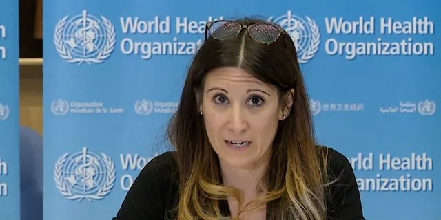 Мария Ван Керхове из ВОЗ принимает участие в виртуальном брифинге новостей по COVID-19 в апреле. (AFP через Getty Images, файл)