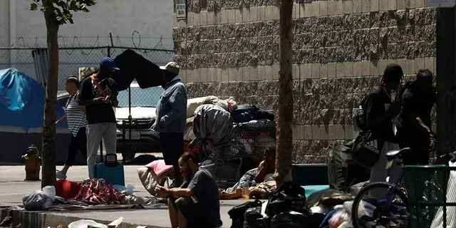 Carts and belongings of homeless people rest along sidewalks and streets in the skid row area of downtown Los Angeles, California, U.S., June 28, 2019. Four men have pleaded guilty to offering homeless people in the area money and cigarettes for false or forged signatures on state ballot petitions. (REUTERS/Patrick T. Fallon)