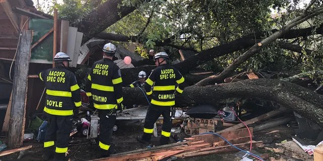 A total of 19 people were sent to area hospitals on July 5, 2020, after a large tree toppled onto a detached garage in a Maryland neighborhood where people attending a child's birthday party sought shelter from a severe thunderstorm.