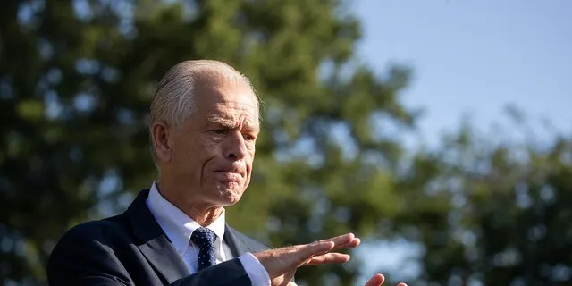 White House trade adviser Peter Navarro speaks with reporters at the White House, July 29, 2020, in Washington. (AP Photo/Alex Brandon)