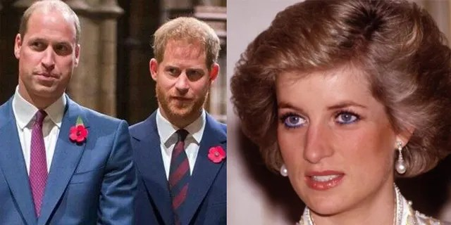 Princes William and Harry previously spoke out about their mother in a documentary titled 'Our Mother Diana: Her Life and Legacy.'