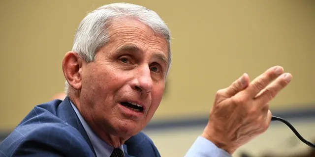 Dr. Anthony Fauci, director of the National Institute for Allergy and Infectious Diseases, testifies before a House Subcommittee on the Coronavirus Crisis hearing on July 31, 2020, in Washington, DC. (Photo by Kevin Dietsch-Pool/Getty Images)
