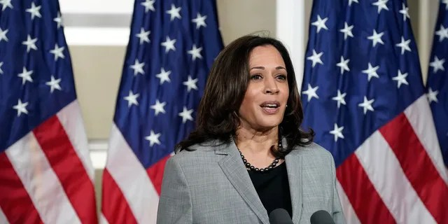 Vice President Kamala Harris has not held formal press talks since she took office, even as President Biden tapped her to lead diplomatic efforts to resolve the border crisis.