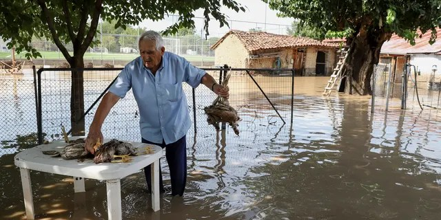 A man holds drowned poultry near his home in the village of Magoula, near the town of Karditsa, Saturday, September 19, 2020.
