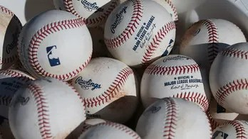 Gambler pleads guilty to threatening Tampa Bay Rays players