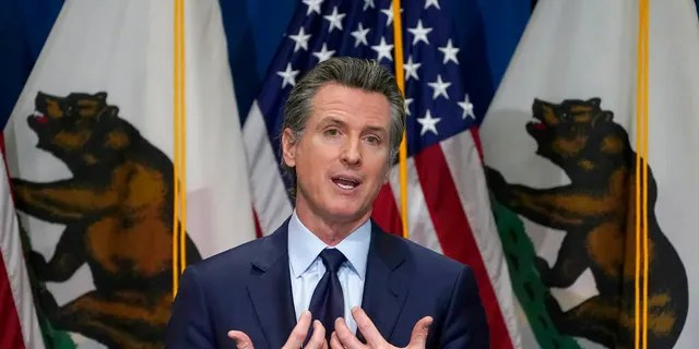 FILE: Government of California.  Gavin Newsom outlined his 2021-2022 state budget proposal during a news conference in Sacramento, California.
