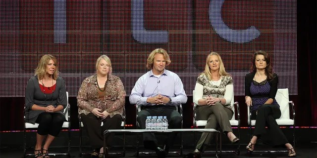 'Sister Wives,' a reality TV series on TLC, aims to show how Kody Brown and his family navigate life in a world that seems to shun their lifestyle.