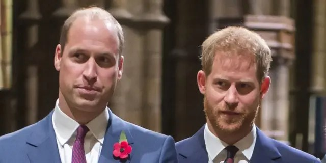 Prince William is reportedly confused as to why his brother, Prince Harry, keeps 'throwing his family under the bus.'