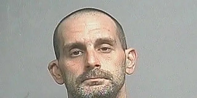 Michael D.  Fogelsong, 33, Adrian, Min.  Kay, has been placed in the Lake County Jail on charges of making false alarms, a third-degree felony, and already misdemeanor trespasses.  (Lake County Sheriff's Office)