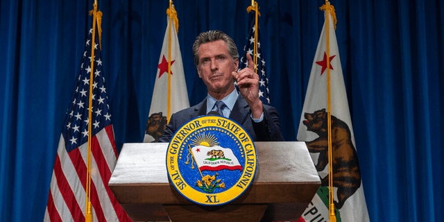 FILE: California Gov. Gavin Newsom answers questions from reporters after delivering his revised budget proposal at a press conference in Sacramento, Calif.