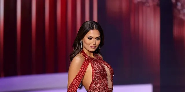 Miss Universe Mexico Andrea Meza explained the story behind the wedding photo that went viral on social media.