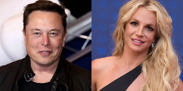 Elon Musk tweeted his support of Britney Spears amid her conservatorship battle.