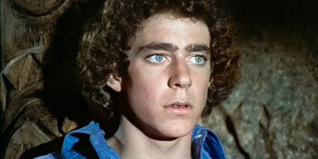 Barry Williams starred as Greg Brady in the beloved TV series.