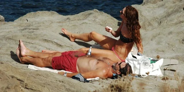 Hamm and Osceola soaked up the sun while laying on the rocks.