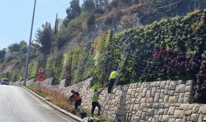 La nueva entrada a Jerusalén: la Gran Muralla Verde en Israel - Canal 7