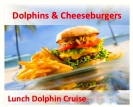 gulf shores al and orange beach al dolphin cruise with cheeseburgers