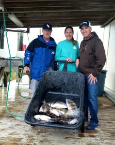 redfish & sheepshead are biting along the AL Gulf Coast Spring Break 2015 Shared Expense Inshore trip