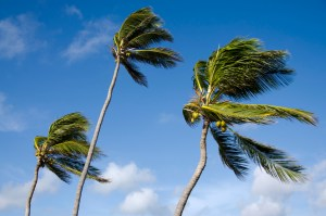 Wind Mitigation Inspections - Seminole Florida - Advanced Home inspections