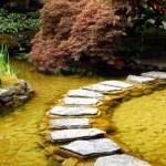 Step Pond