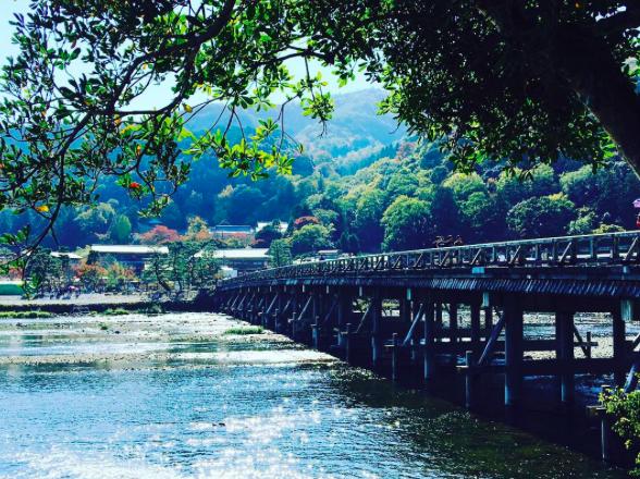京都 Airbnb 民泊 ゲストハウス