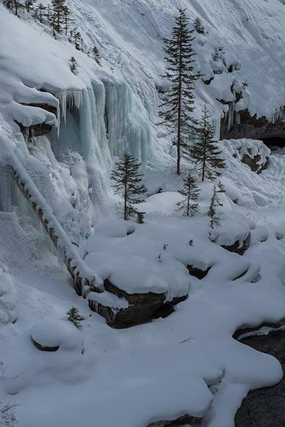 acupuncture blog johnston canyon