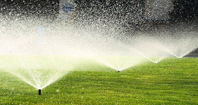 The Most Suitable Treatment for Your Lawn