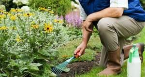 Spring Garden Planning Guide