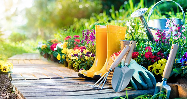 Budget Ideas for a Garden Makeover