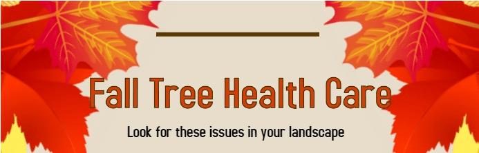 Fall Tree Health Care