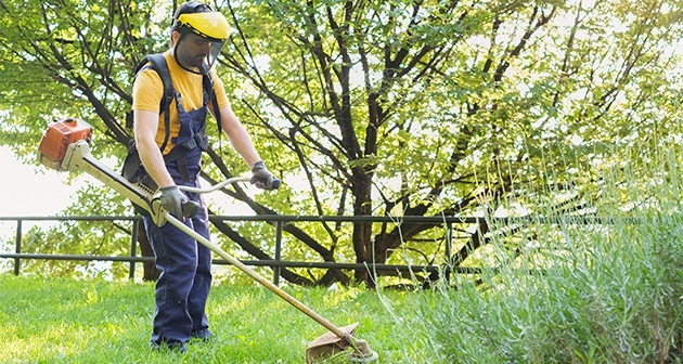 Top 5 Reasons That Tell You Benefits of Hiring Professional Lawn Care Services