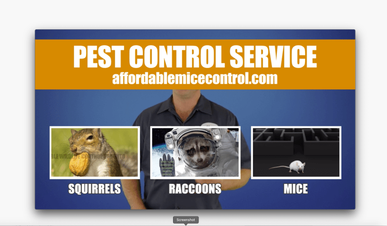Affordable Mice and Pest Control Mississauga, Brampton, Oakville - Efficient Mice Control - Affordable Pest Control, Economical Pest Control, Low Cost Mice Control,