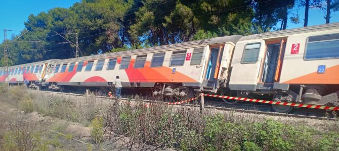 مصدر من عين المكان أكد أن القطار انحرف فجأة عن السكة ، وأصيب المسافرون القادمون من مراكش بحالة هلع، مما تسبب في إغماءات في صفوفهم، وأيضا بعض الجروح.