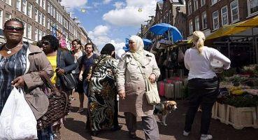 مغاربة هولندا