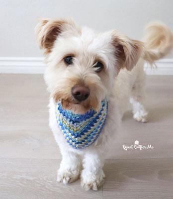 crochet dog bandana