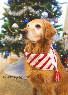 Christmas Candy Cane Dog Scarf