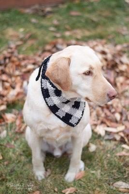 Plaid Crochet Dog Bandana